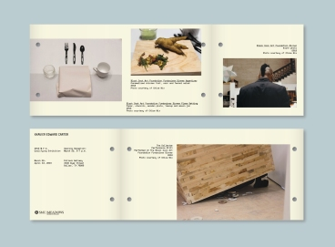 2019MFA_Brochure_development 3
